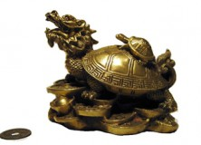 What the Dragon Tortoise Signifies?
