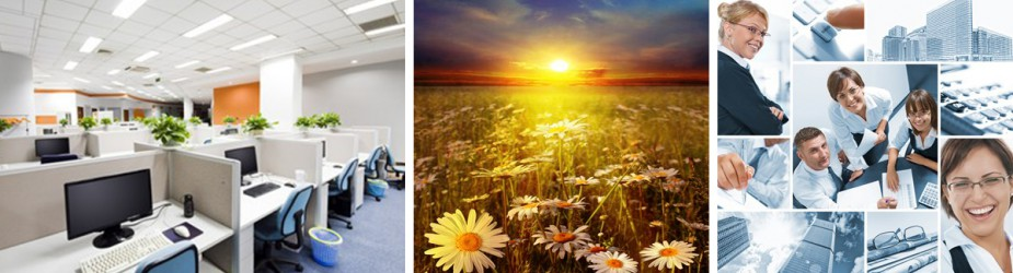Feng Shui your office or home office