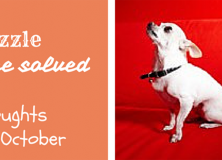 "October – Dog Month ""Xu"""