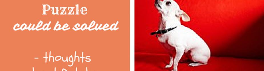 "October – Dog Month ""Xu"""