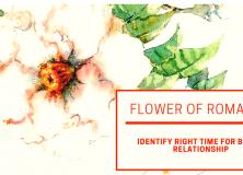 BaZi – Flower of Romance