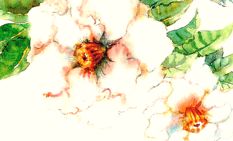 flower-of-romance